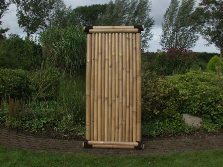 bamboescherm-timo2